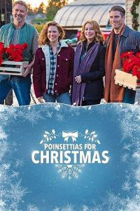"Poster for the movie ""Poinsettias for Christmas"""