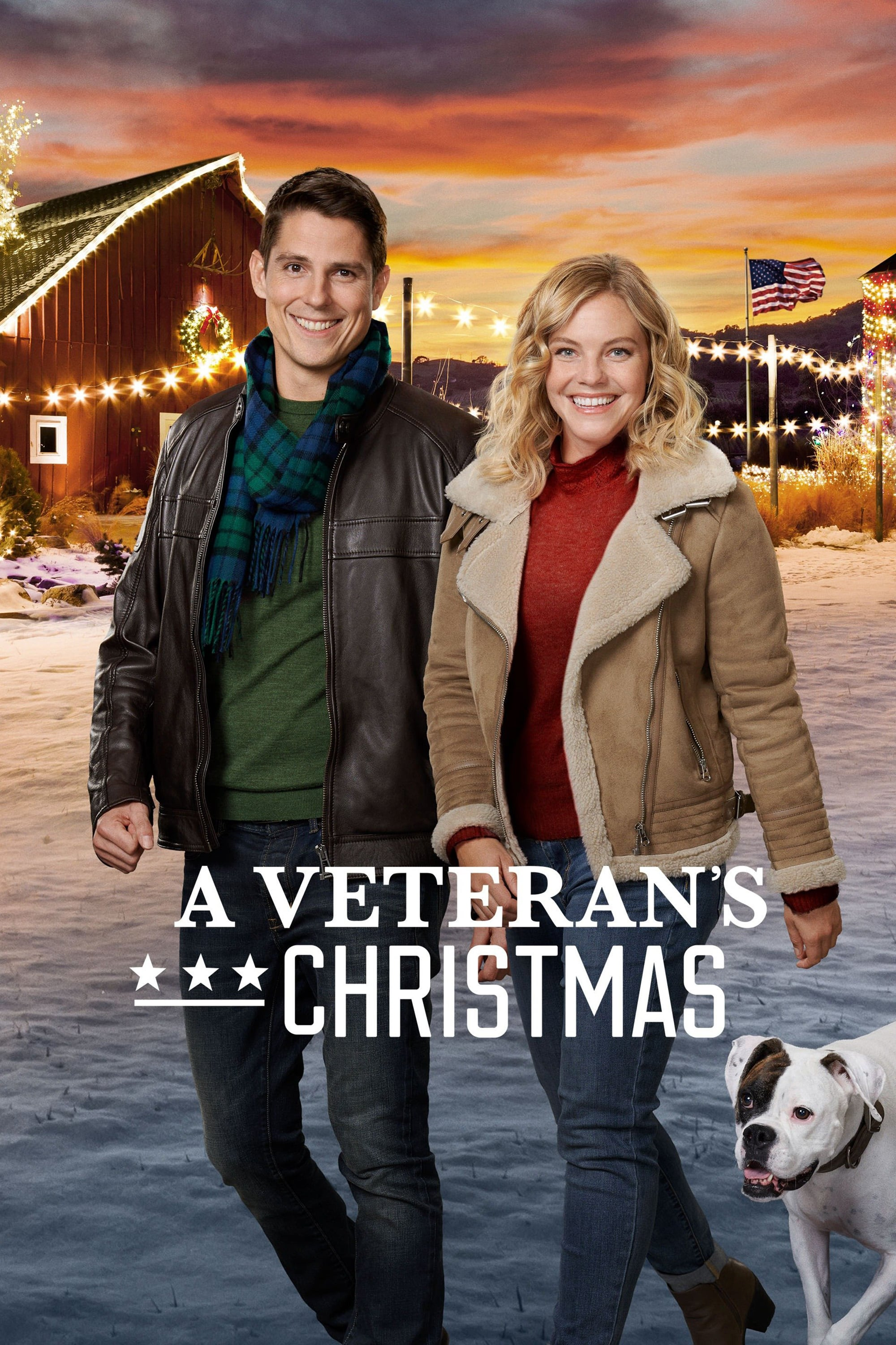 "Poster for the movie ""A Veteran's Christmas"""