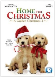 """Poster for the movie """"A Golden Christmas 3"""""""