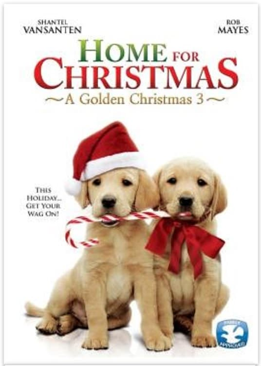 "Poster for the movie ""A Golden Christmas 3"""