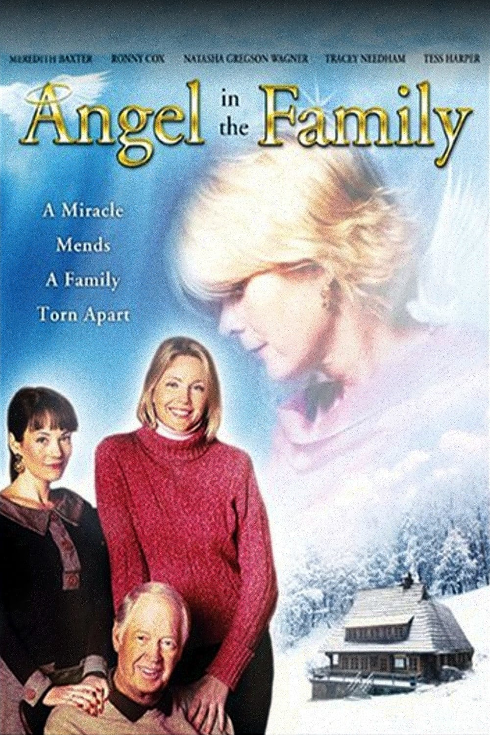 "Poster for the movie ""Angel in the Family"""