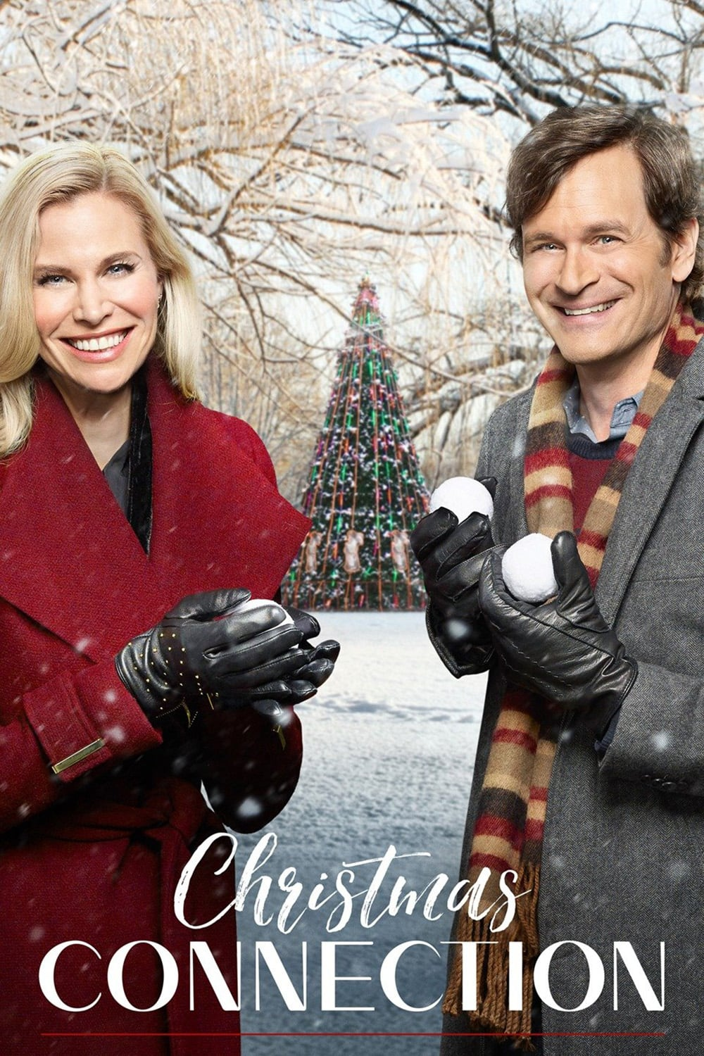 "Poster for the movie ""Christmas Connection"""
